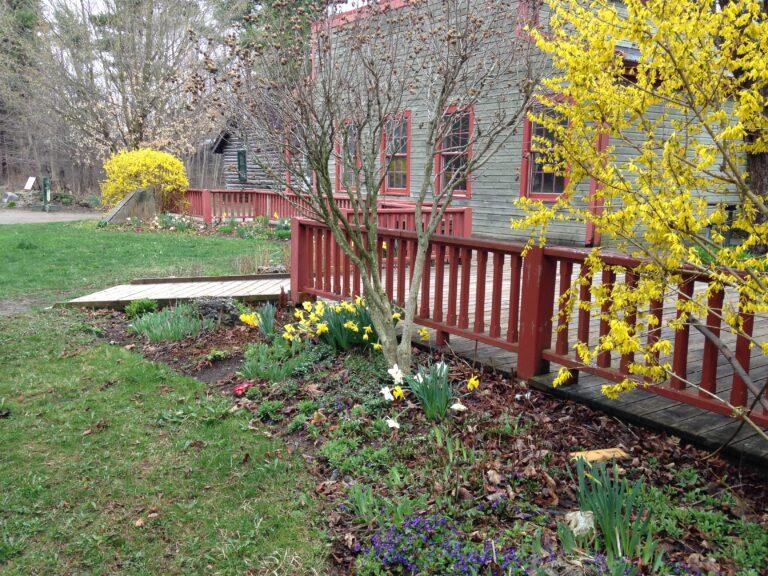 Spring Renewal At Westfield